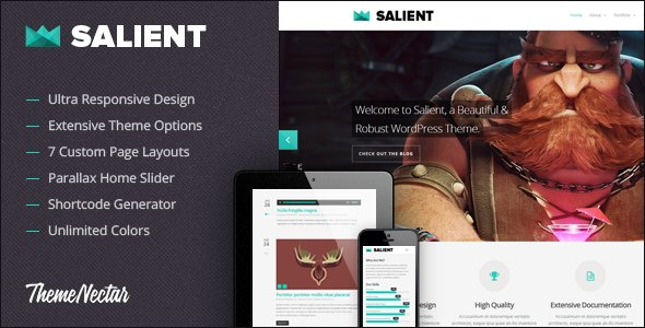 WordPress Salient Theme